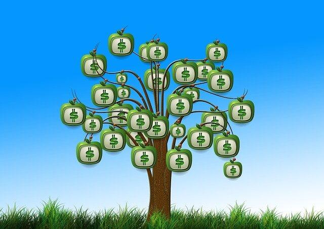 dolarová jablka